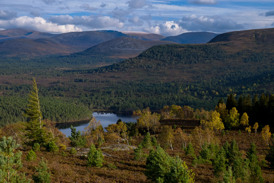 The Cairngorms, Highlands - Birmingham Taxi